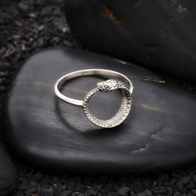 Sterling Silver Ouroboros Ring with Snake on Front