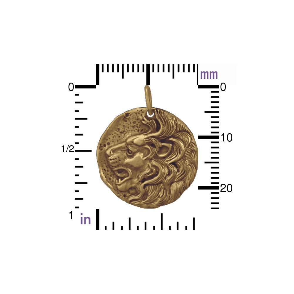Ancient Coin Jewelry Charm - Lion - Bronze 24x20mm