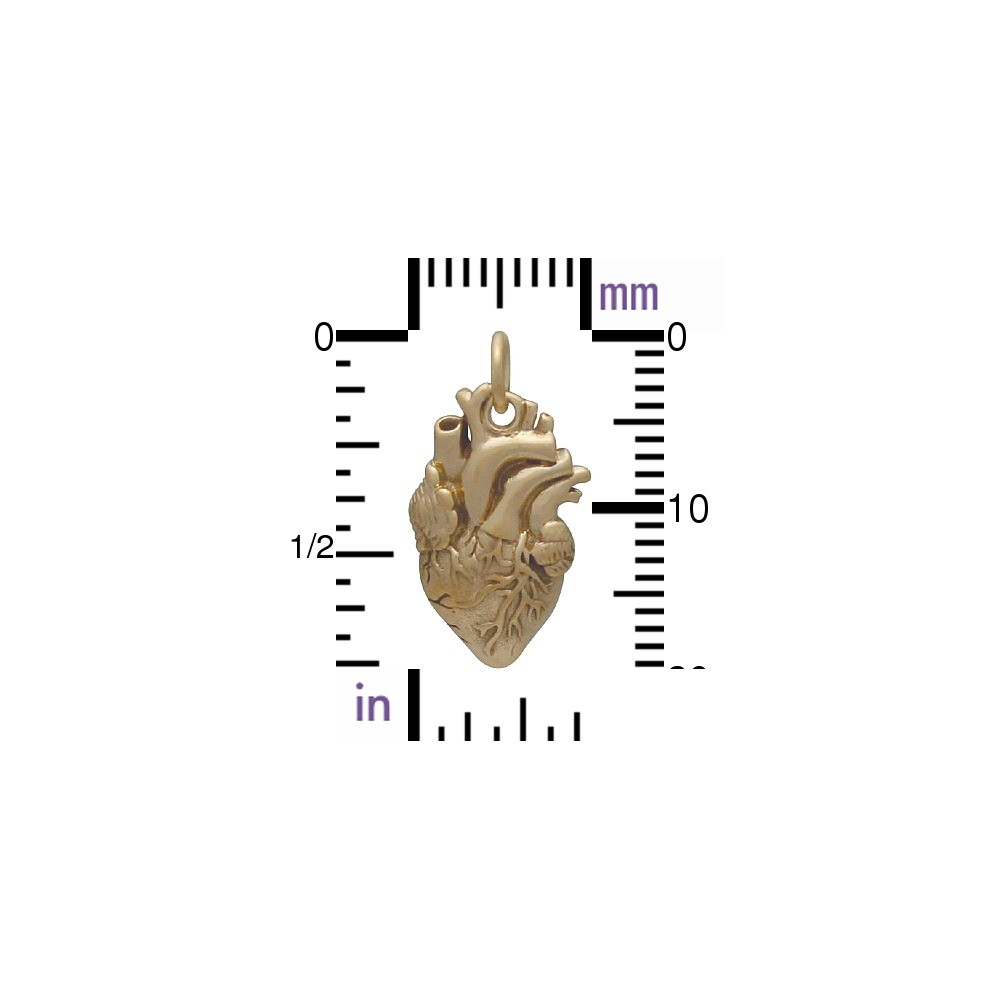Anatomical Heart Jewelry Charm - Bronze 21x10mm