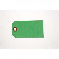 "TAGS, SHIPPING, PLAIN GREEN 2""X4"" SIZE #4"