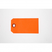 "TAGS, SHIPPING, PLAIN ORANGE 2""X4"" SIZE #4"