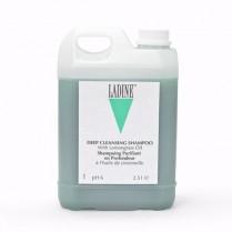 Ladine Back Bar Deep Cleansing Shampoo 2.5L
