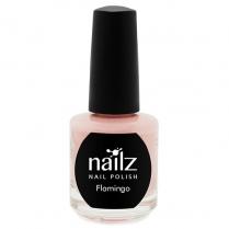 Nailz Nail Polish 15ml  Flamingo