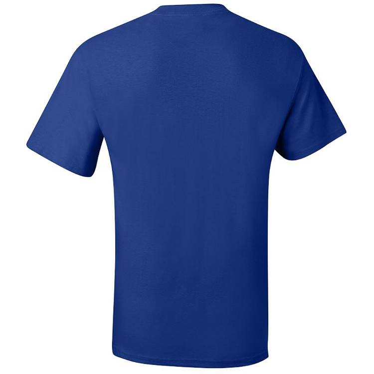 Hanes Beefy-T Tee Shirt with Pocket