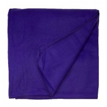 Union Line Polar Fleece Blanket