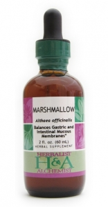 Marshmallow Extract