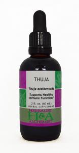 Thuja Extract
