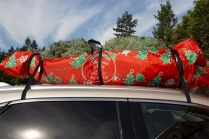 Car Top Carrier And Tree Care Kit