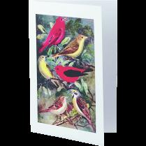 INKJET CARDS 1/2 FOLD 20-SETS 5-1/2x8-1/2