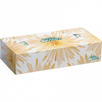 WHITE SWAN TISSUE 30B/CTN 2PLY 100SH/BOX KRI08301