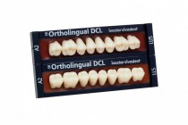 SR ORTHOLINGUAL DCL POSTERIOR
