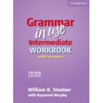 Grammar in Use Intermediate Workbook - 3rd Ed.  (C478)