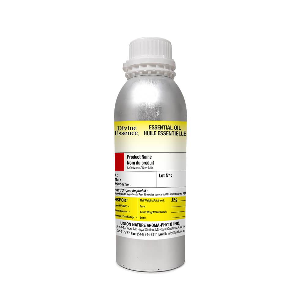 Rosemary - Camphor Type Organic