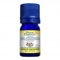 Sage - Lavandulifolia Organic