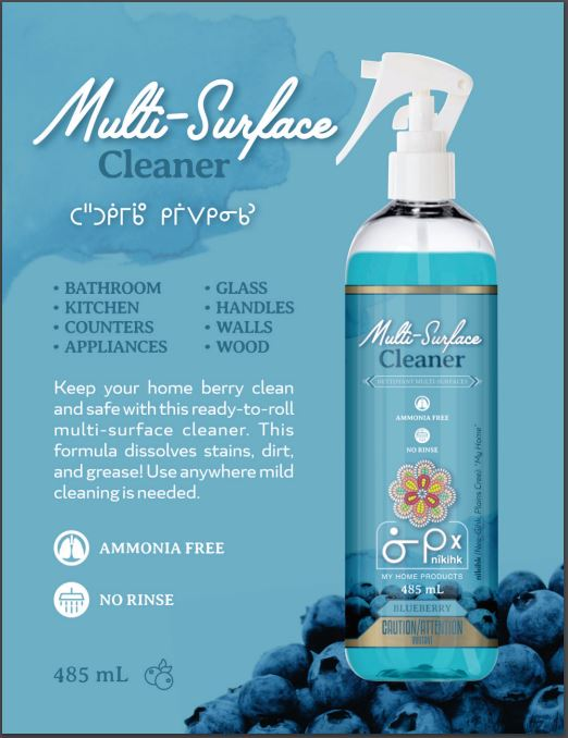 Multi Surface Cleaner (Blueberry) 485ml