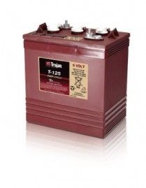 T-125   BATTERIE CYCLE PROLONGE 6 V 240 AH TROJAN