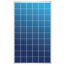 EWS-275P-60   Solar panel polycristalline  275W
