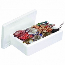 Fish Box Foam Small 400x300x13