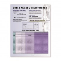Understanding BMI Laminated Poster