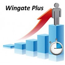 Lode Ergometry Manager (LEM) Wingate