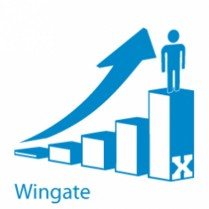 Wingate Module Upgrade to V10