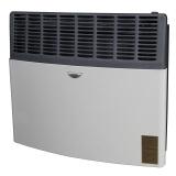 Ashley Direct Vent Gas Heaters 17,000 BTU/h LP