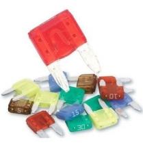 Assorted Mini ATM Fuses
